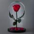 Russian Red, красная роза в колбе Premium