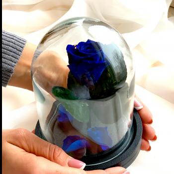 Роза в колбе Дюймовочка Blue Marlin / Морская Волна