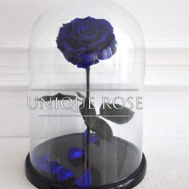 Blue Marlin, синяя роза в колбе King Size